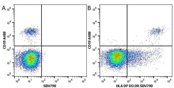 Anti Human HLA DP DQ DR Antibody, clone WR18 thumbnail image 15