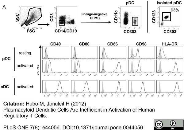 Anti Human HLA DR Antibody, clone YD1/63.4.10 gallery image 1