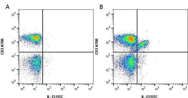 Anti Human Interleukin-13 Antibody, clone B-P6 gallery image 1