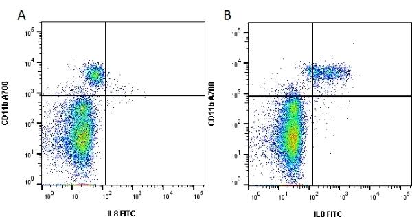 Anti Human Interleukin-8 Antibody, clone NAPII gallery image 1