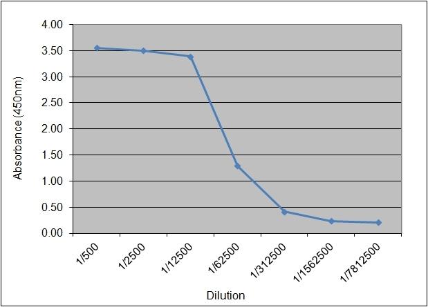 Anti Human Insulin/Proinsulin Antibody, clone 130.4B4 thumbnail image 1