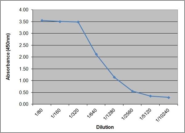 Anti Human Insulin/Proinsulin Antibody, clone 130.4B4 thumbnail image 2