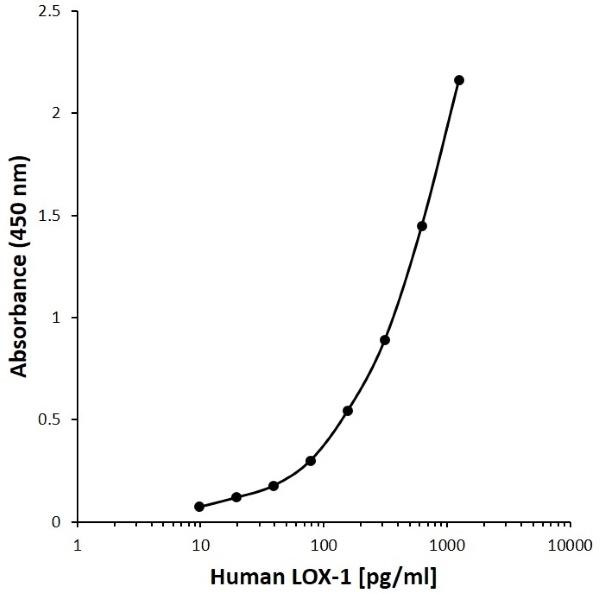Anti Human LOX-1 Antibody, clone DE17-4B9 gallery image 1