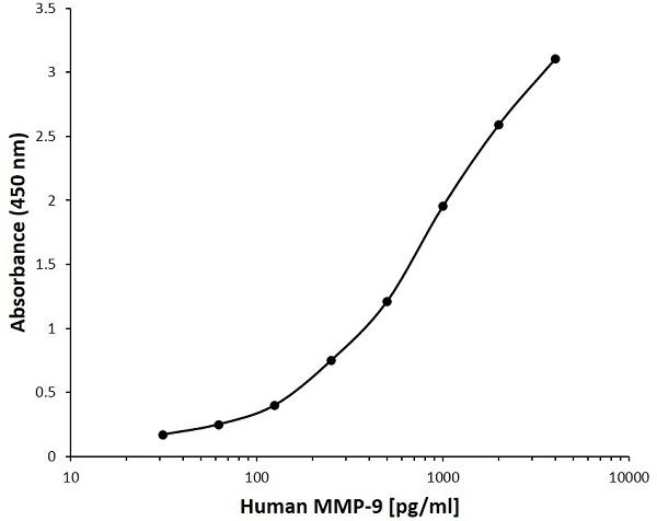 Anti Human MMP-9 Antibody, clone B10-7B9 gallery image 1