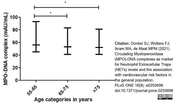 Anti Human Myeloperoxidase Antibody, clone 4A4 thumbnail image 2