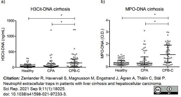 Anti Human Myeloperoxidase Antibody, clone 4A4 thumbnail image 3