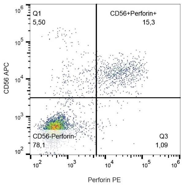 Anti Human Perforin Antibody, clone dG9 thumbnail image 1
