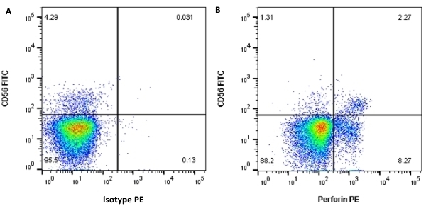 Anti Human Perforin Antibody, clone dG9 thumbnail image 2
