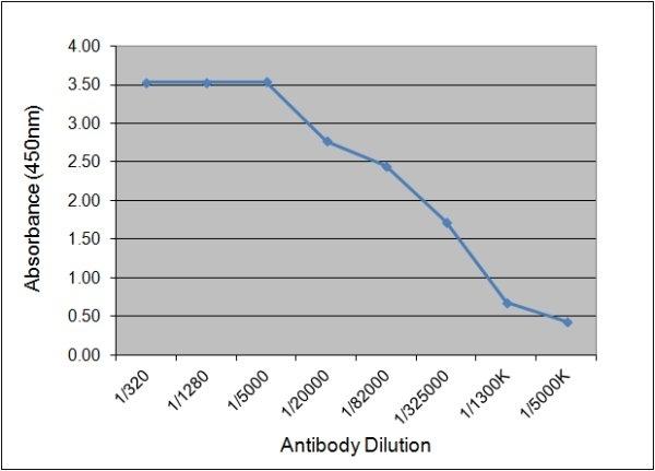 Anti Human Prostate Specific Antigen Antibody, clone 58.8D9 gallery image 1