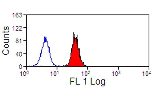 Anti Human Siglec-9 Antibody, clone K8 thumbnail image 1