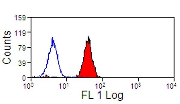 Anti Human Siglec-9 Antibody, clone K8 thumbnail image 2
