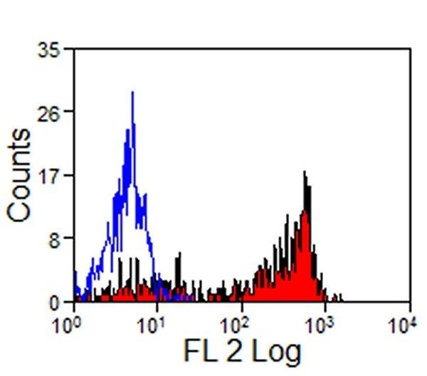 Anti Human Siglec-9 Antibody, clone K8 thumbnail image 3