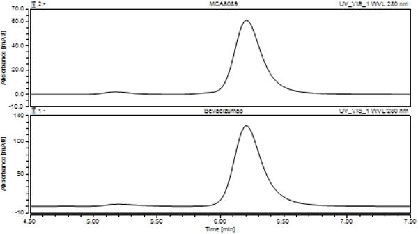 Anti VEGF (Bevacizumab Biosimilar) Antibody, clone Bevacizumab thumbnail image 2