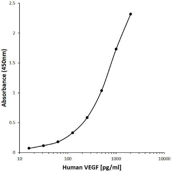 Anti Human VEGF Antibody, clone CD17-1E1 gallery image 1