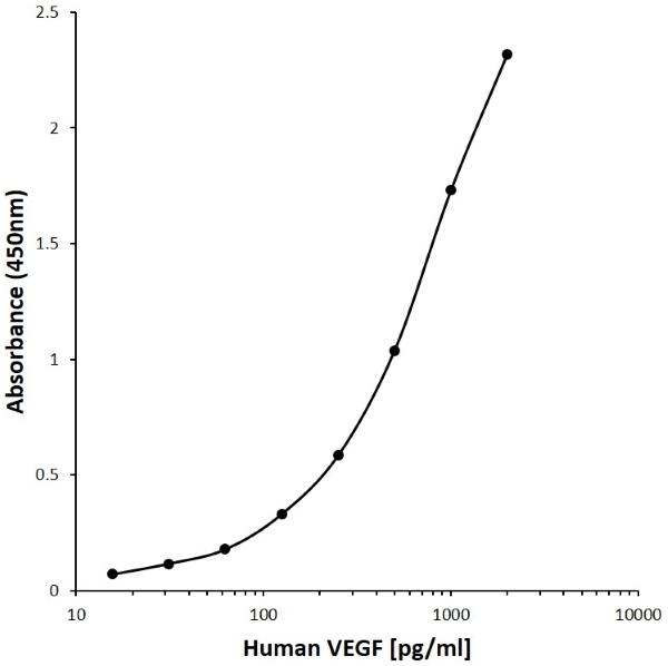 Anti Human VEGF Antibody, clone CD19-4G11 gallery image 1