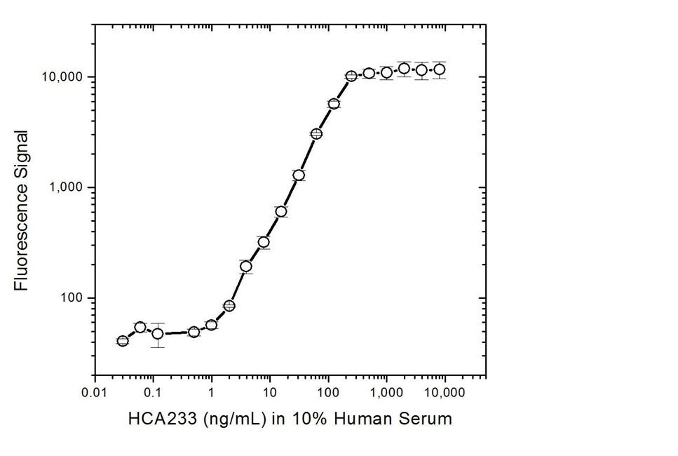 Anti Infliximab Antibody, clone AbD20436_hIgG1 thumbnail image 4
