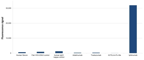 Anti Ipilimumab Antibody, clone AbD34428ia thumbnail image 1