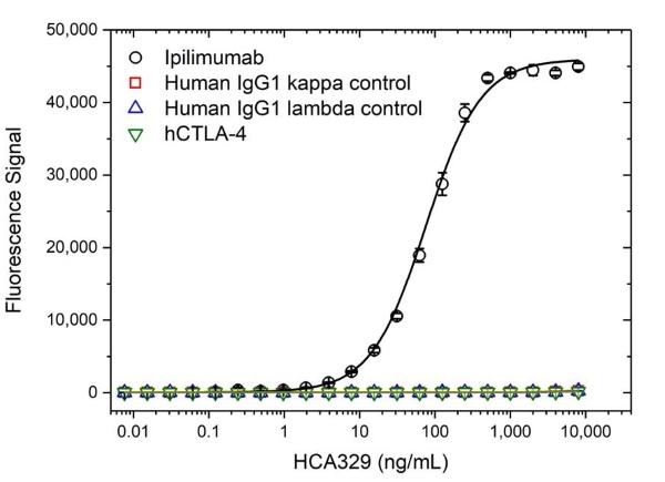 Anti Ipilimumab Antibody, clone AbD34429ia thumbnail image 2