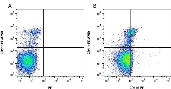 Anti Mouse CD115 Antibody, clone 604B5 2E11 gallery image 1