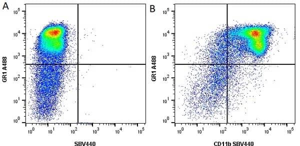 Anti Mouse CD11b Antibody, clone 5C6 thumbnail image 39
