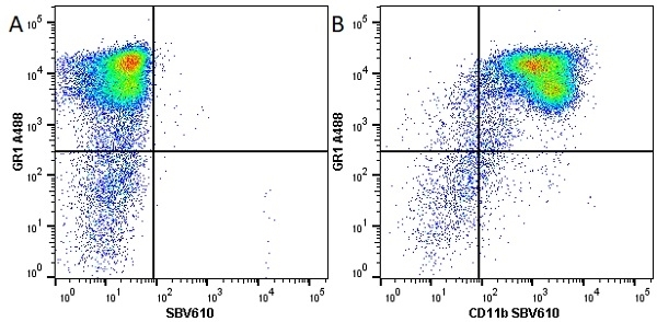 Anti Mouse CD11b Antibody, clone 5C6 thumbnail image 40
