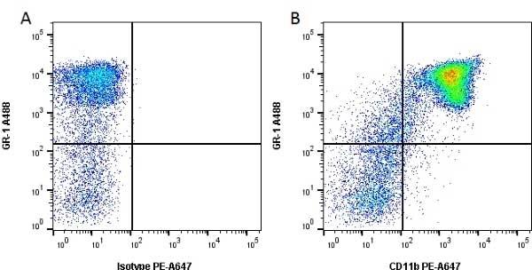 Anti Mouse CD11b Antibody, clone 5C6 thumbnail image 5