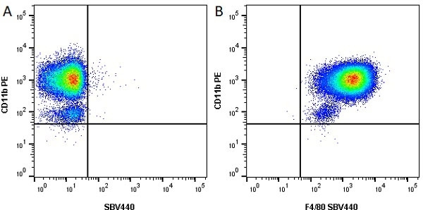 Anti Mouse CD11b Antibody, clone M1/70.15 thumbnail image 14