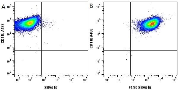 Anti Mouse CD11b Antibody, clone M1/70.15 thumbnail image 15