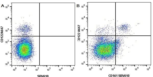 Anti Mouse CD122 Antibody, clone TM-BETA 1 thumbnail image 3