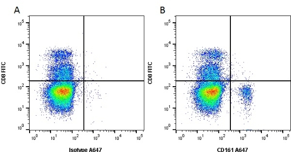 Anti Mouse CD161 / NK1.1 Antibody, clone PK136 thumbnail image 3