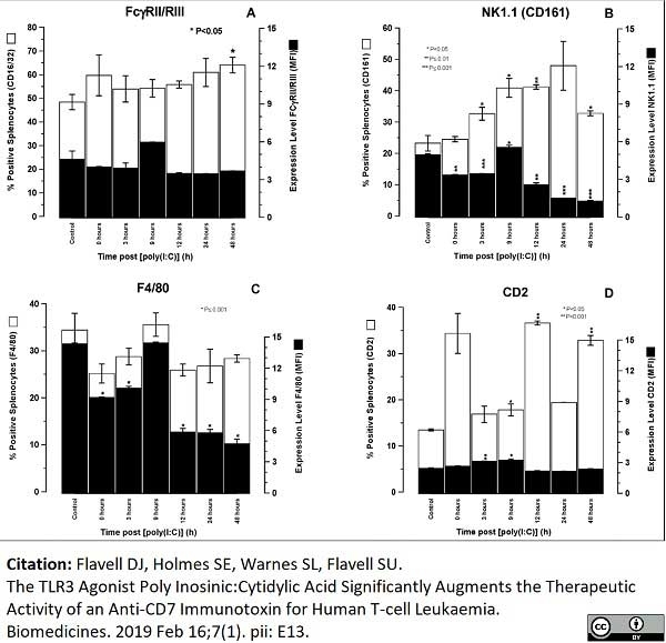 Anti Mouse CD161 / NK1.1 Antibody, clone PK136 thumbnail image 4