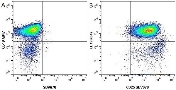 Anti Mouse CD19 Antibody, clone 6D5 thumbnail image 19