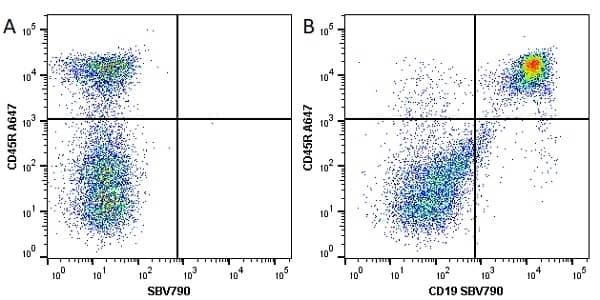 Anti Mouse CD19 Antibody, clone 6D5 thumbnail image 30