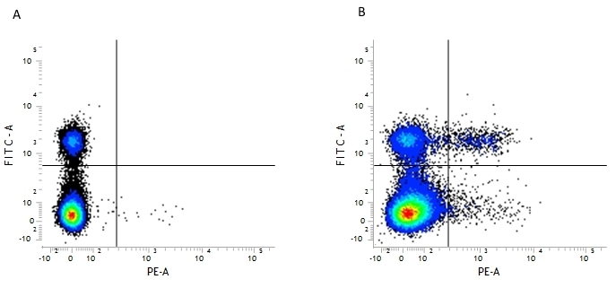 Anti Mouse CD25 Antibody, clone PC61.5.3 gallery image 1