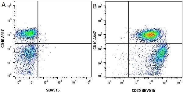 Anti Mouse CD25 Antibody, clone PC61.5.3 thumbnail image 4