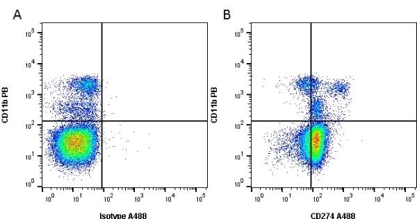 Anti Mouse CD274 Antibody, clone MIH6 gallery image 1