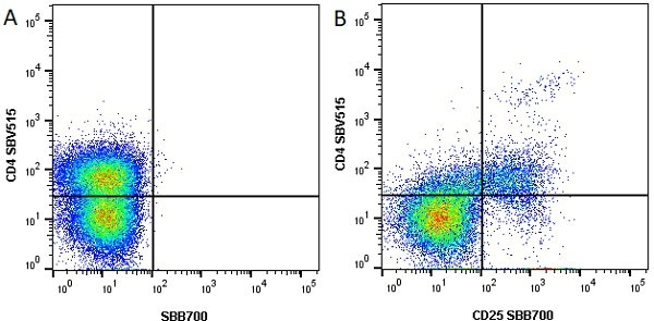 Anti Mouse CD4 Antibody, clone RM4-5 thumbnail image 14