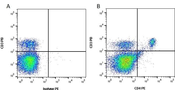 Anti Mouse CD4 Antibody, clone RM4-5 thumbnail image 2