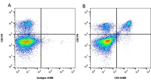 Anti Mouse CD4 Antibody, clone RM4-5 thumbnail image 4