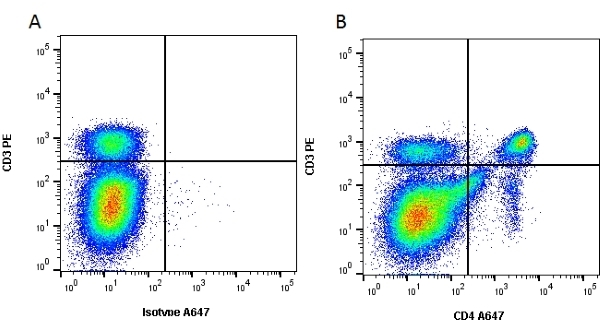 Anti Mouse CD4 Antibody, clone RM4-5 thumbnail image 5