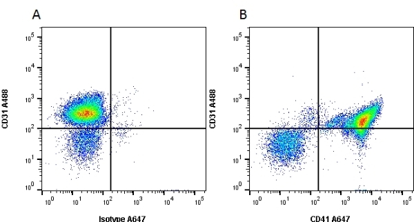 Anti Mouse CD41 Antibody, clone MWReg30 thumbnail image 3