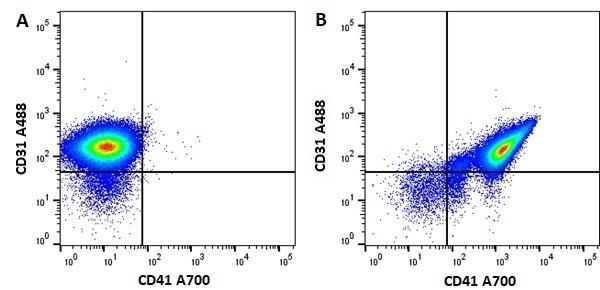 Anti Mouse CD41 Antibody, clone MWReg30 thumbnail image 6
