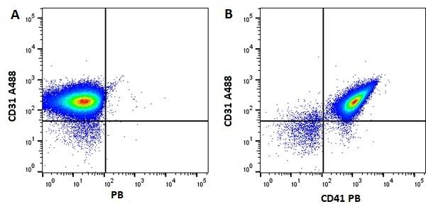 Anti Mouse CD41 Antibody, clone MWReg30 thumbnail image 7