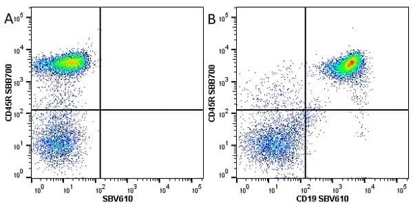Anti Mouse CD45R Antibody, clone RA3-6B2 thumbnail image 16