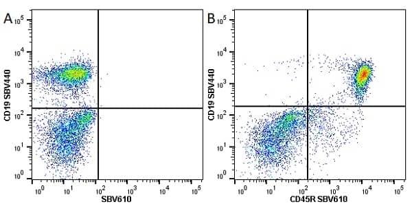 Anti Mouse CD45R Antibody, clone RA3-6B2 thumbnail image 17