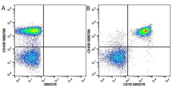 Anti Mouse CD45R Antibody, clone RA3-6B2 thumbnail image 19
