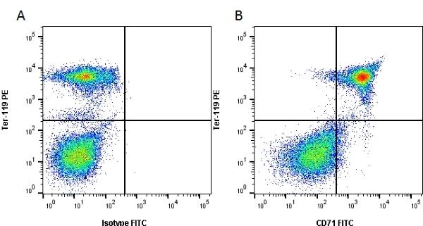 Anti Mouse CD71 Antibody, clone 8D3 thumbnail image 1