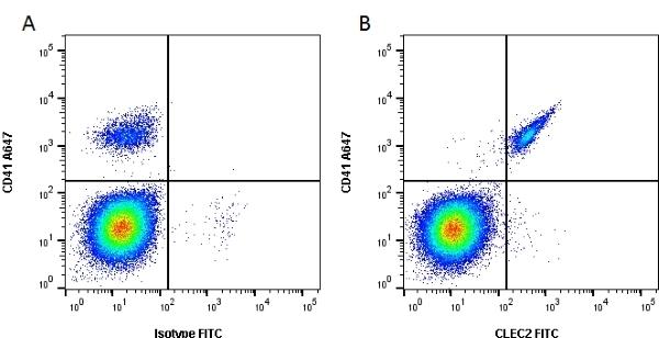 Anti Mouse CLEC2 Antibody, clone 17D9 thumbnail image 1