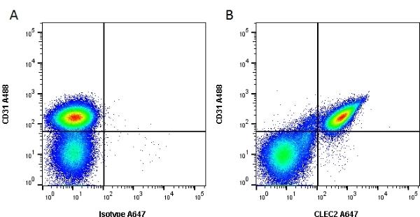Anti Mouse CLEC2 Antibody, clone 17D9 thumbnail image 2