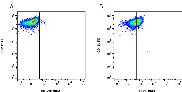 Anti Mouse F4/80 Antibody, clone Cl:A3-1 thumbnail image 41